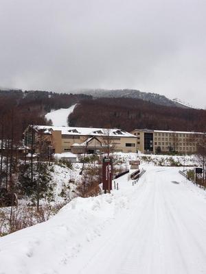 2012.11.21.1.JPG