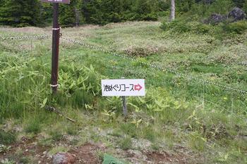 yakebi20120713.2.jpg